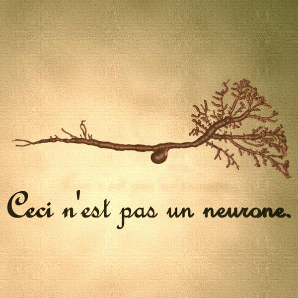 ceci-nest-pas-un-neurone.jpg